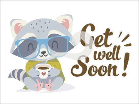 Get Well Soon Decade Gift Box - Raccoon