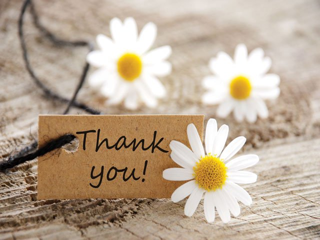 Thank You Decade Gift Box - Daisies