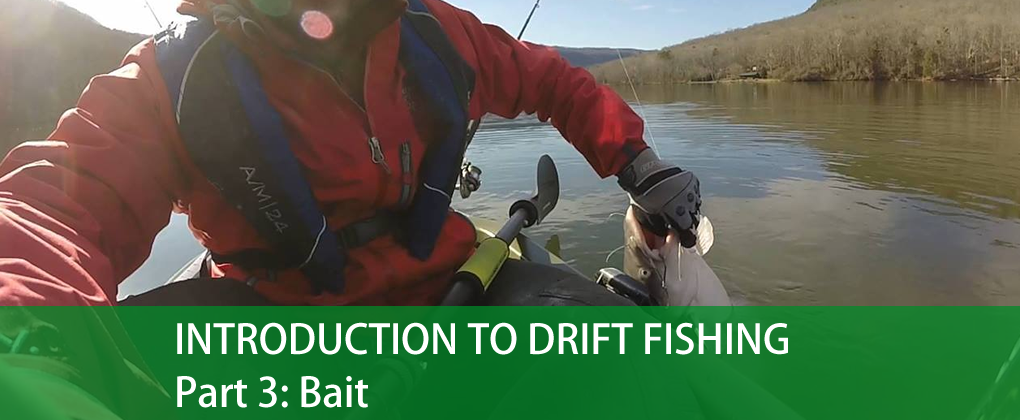Introduction To Drift Fishing, Part 3: Bait