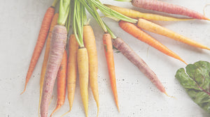 Carrot Skin Care Products: Smoothing and Calming