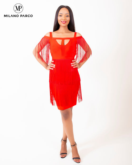 Bubsy Fringe Dress | Red
