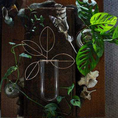 MADE TO ORDER - Brass Propagation Station/Wall Vase with U Glass
