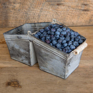 Twin Berry Basket