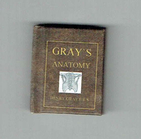 Gray`s Anatomy