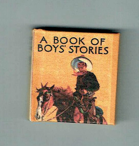 Book of Boy`s Stories