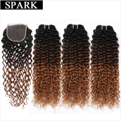 Ombre SPARK Brazilian Human Hair Weave Bundles With Closure Afro Kinky Curly Hair With Closure Remy Hair Closure With Bundles