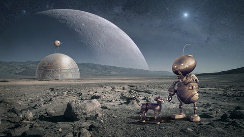 Moon and robot