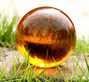 crystal amber on grass