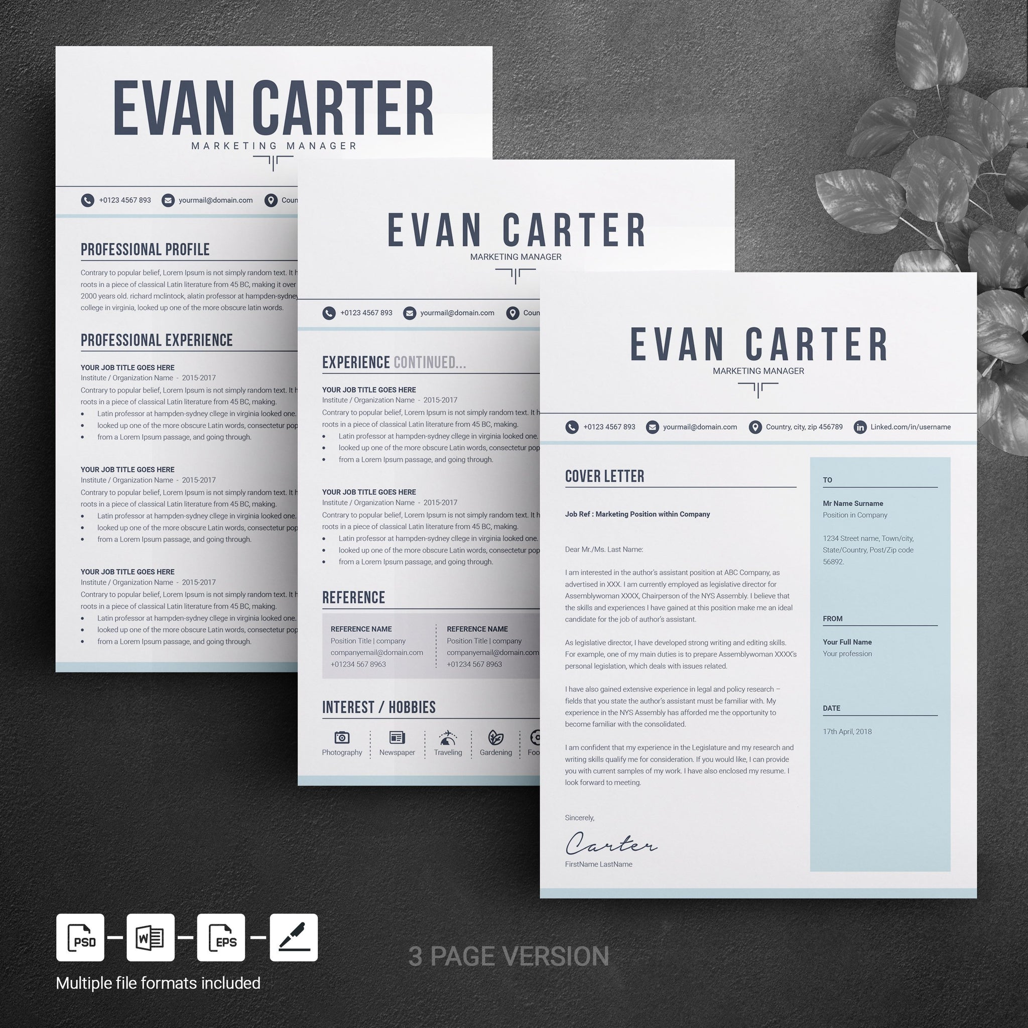 simple clean resume design word template two page modern