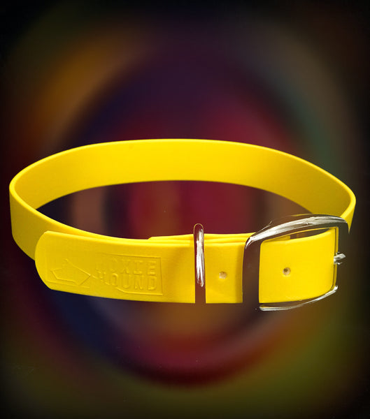 Intertidal Collection™ Yellow 1 inch Collar - The Moxie Collection