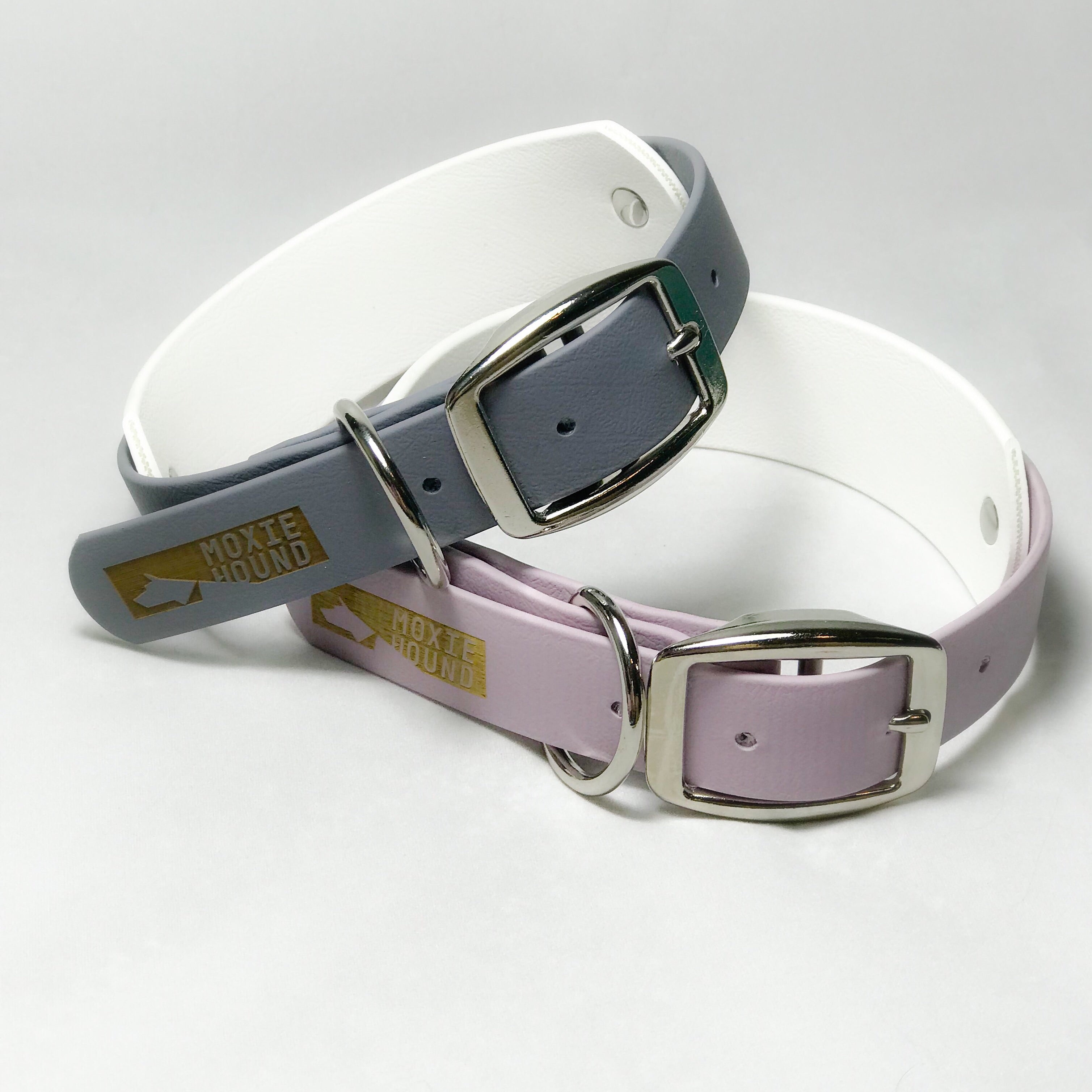 "1 1/2"" Double Layer Collar - The Moxie Collection"