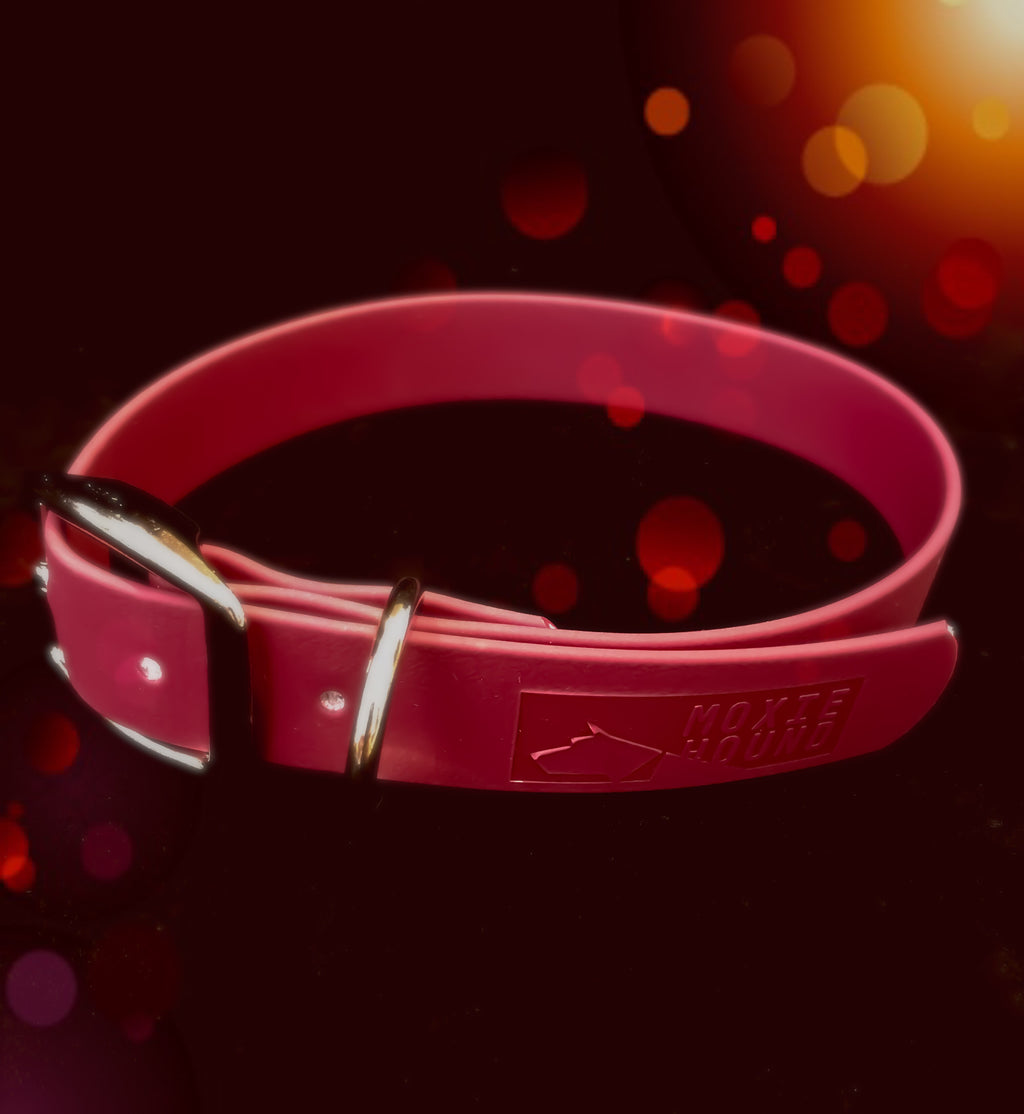 Intertidal Collection™ Wine 1 inch Collar - The Moxie Collection