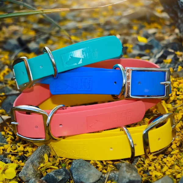 Intertidal Collection™ 1 inch Collar and Leash Set