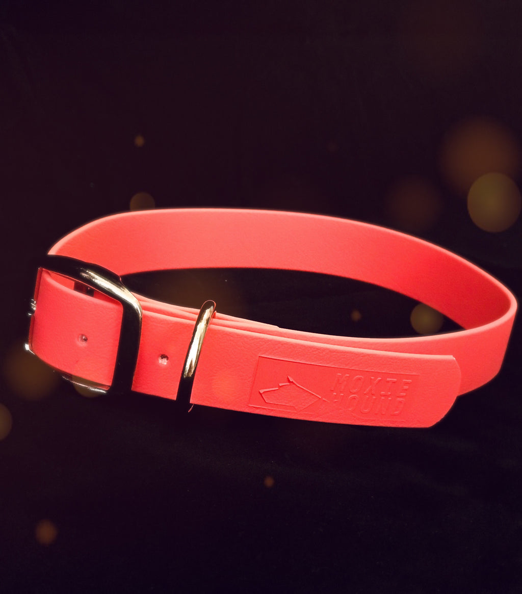 Intertidal Collection™ Pink Coral 1 inch Collar - The Moxie Collection