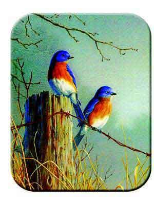 Tuftop Tempered Glass Kitchen Board, Wildlife Collection - Bluebirds Small