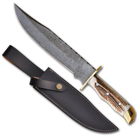 Stag Handle Damascus Hunting Knife