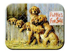 Tuftop Tempered Glass Kitchen Board, Artist Collection - Puppies for Sale M