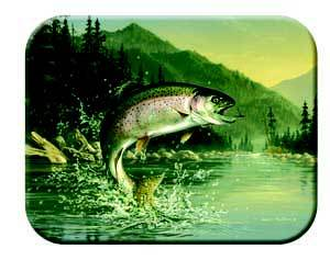 Tuftop Tempered Glass Kitchen Board, Wildlife Collection - Rainbow Trout Me