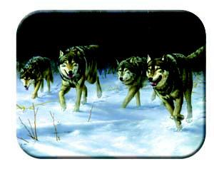 Tuftop Tempered Glass Kitchen Board, Wildlife Collection - Wolves Medium