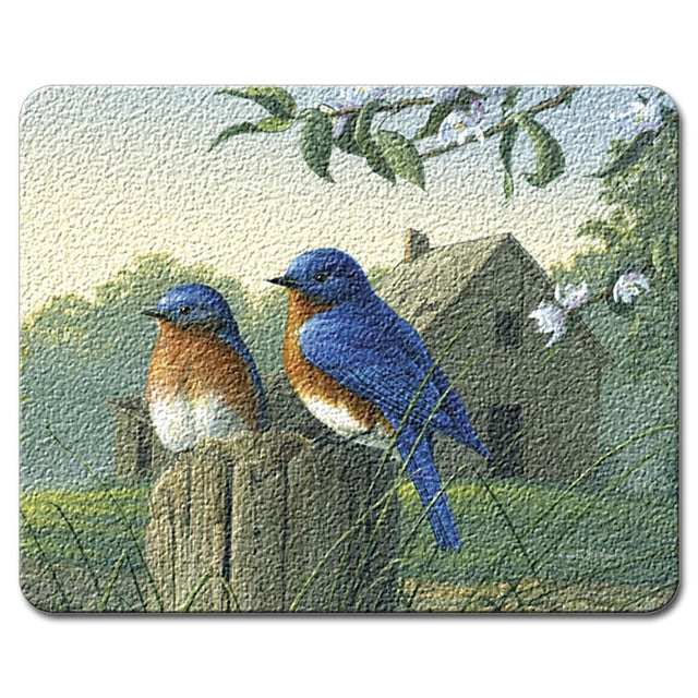 Highland Graphics Feathered Friends Small Glass Cutting Board