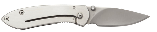 Buck Knives Colleage Pocket Knife with Stainless Handle