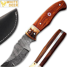 White Deer Damascus Steel Skinner Knife w/ Walnut Wood andstag Bolster 1095 HC