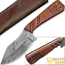 WHITE DEER SPEY BLADE Damascus Steel Hunting Skinner Knife Cocobolo Hardwood Handle