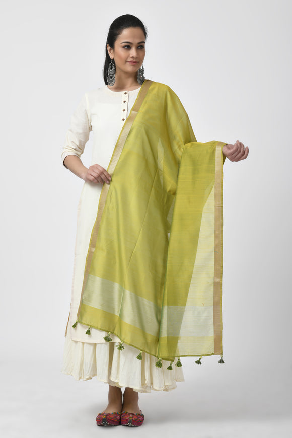 Green Hand Embroidered Chanderi Dupatta