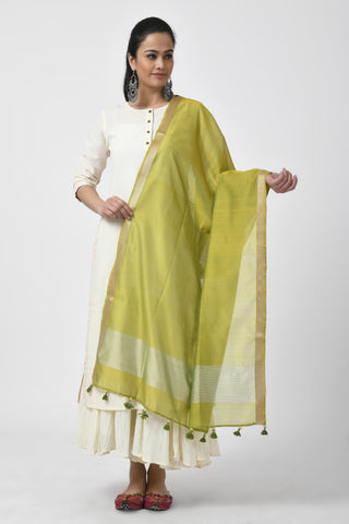 Embroidered Green Dupatta