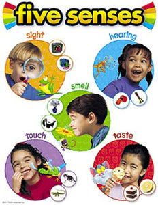 Learning Chart - Five Senses