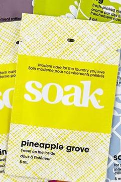 Soak - Minisoak - Assorted Scents