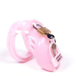 The Sad Pink Excuse Holy Trainer Cage 3.94 inches long