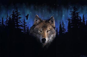 Wolf in Dark Night - iHeart Paint By Numbers