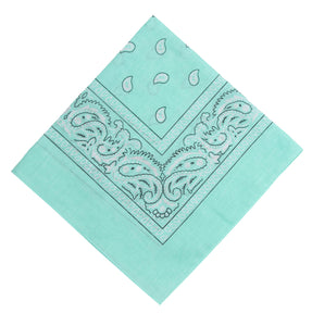 Mint Double Sided Paisley Bandana