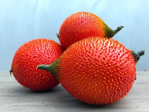 What are the benefits of gac fruit?