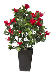 "43"" Outdoor Hibiscus Planter"