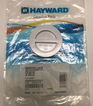 Hayward Flush Plug with gasket