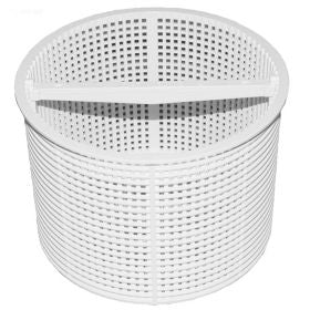 Hayward Inground Skimmer Basket