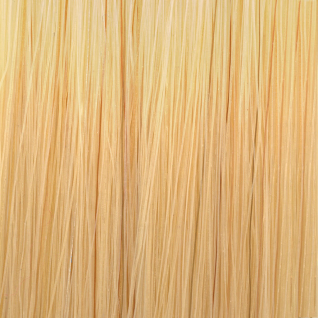 #11GG Light Double Golden Blonde Tape in Hair Extensions - 10 Pieces - SDX. Tape in Hair Extensions