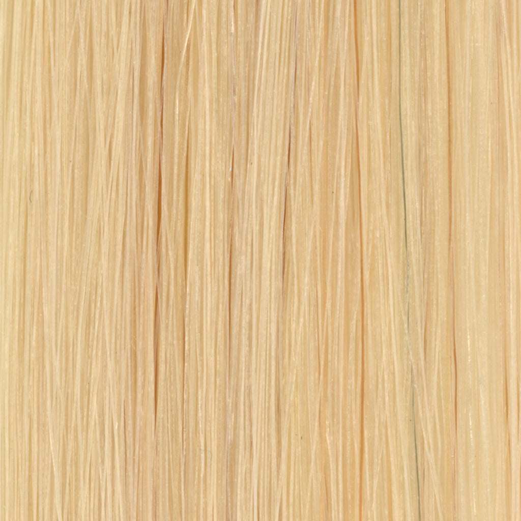 #11G Light Golden Blonde Tape in Hair Extensions - 10 Pieces - SDX. Tape in Hair Extensions