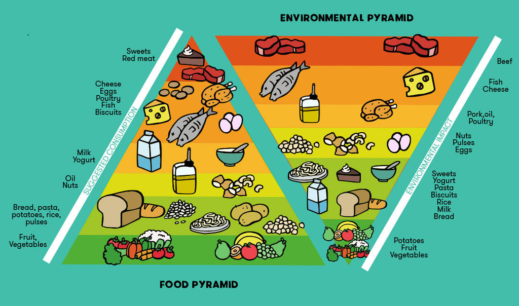 overshoot day food pyramid