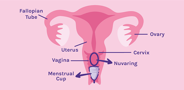Can I use a Menstrual Cup if I'm currently using a Nuvaring?