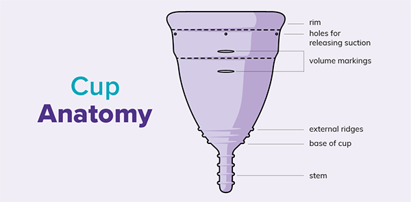Why are there measurements on the side of the menstrual cup?