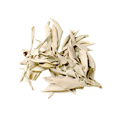 Loose California White Sage