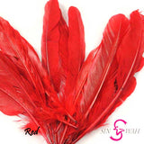 Sin Wah Online - Decorative Bird's Feather