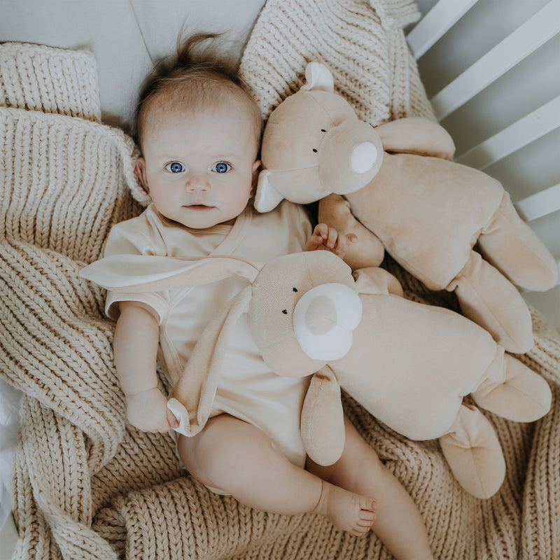 Organic soft toy TEDDY