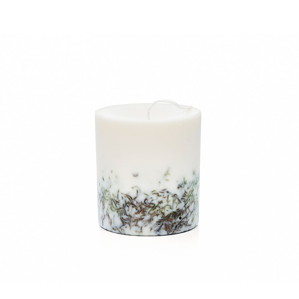 Candle MOSS