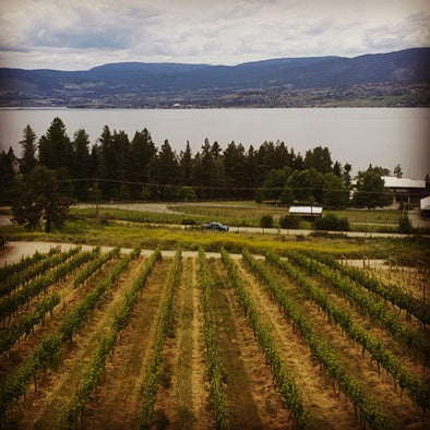 Okanagan Wine Trails