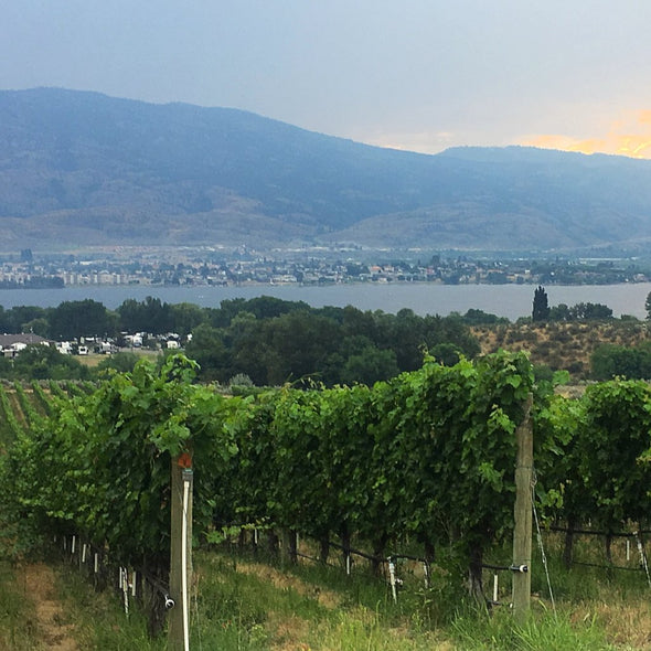 Naramata Wine Tour - craftwinetours