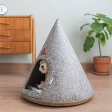 PET CAVE BELLA (Small)